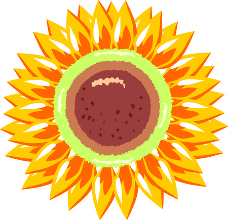 restful: Sunflowers are restful to look at. Illustration