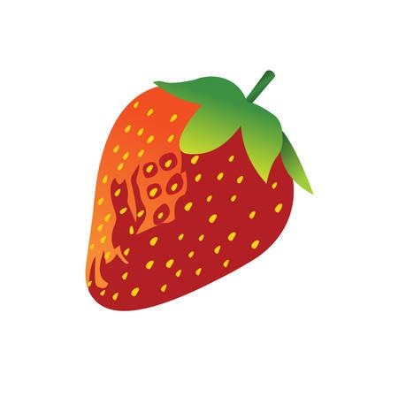 nutrientes: Ar�ndanos fresas y moras son verdaderos s�per alimentos. Naturalmente bayas dulces y jugosas son bajos en az�car y alto contenido de nutrientes que se encuentran entre los mejores alimentos que puede comer. Vectores