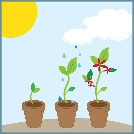 Seedling helps to avoid the air pollution . Pick those design by Concord. Ilustração