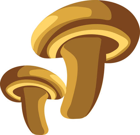 potential: Mushrooms provide a vast array of potential medicinal compounds