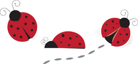 Learn all you wanted know about the ladybugs designs by Concord