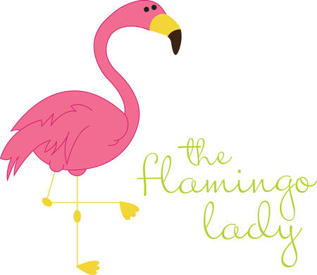 cormorant: Best fabulous flamingo friends forever Illustration