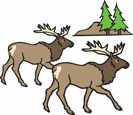 concord: Pick these unique elk designs from concord collections Illustration