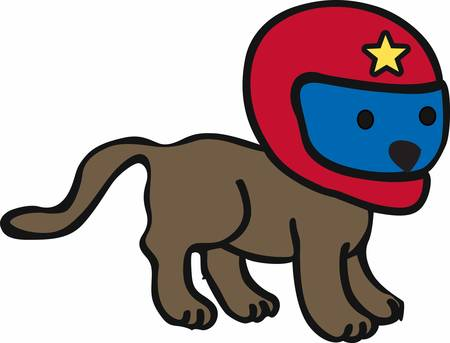 little dog: Cute little dog with red racing helmet with a yellow star on it.
