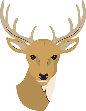 This deer is appreciated for its aesthetic beauty