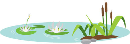 bog: Floating water lilies and cattails scene. Illustration