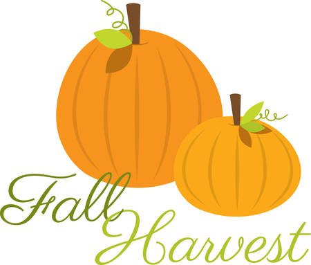 harvest time: Harvest time striped pumpkins for all your seasonal decorating. Illustration