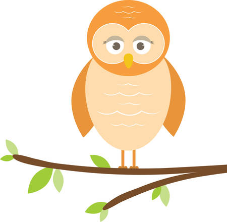 Cute owl perched on a tree branch.