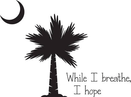 cresent: Tropical palm tree silouette with a cresent moon. Illustration