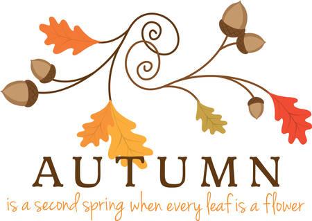 oak leaves: Swirling autumn oak leaves with acorns. Illustration