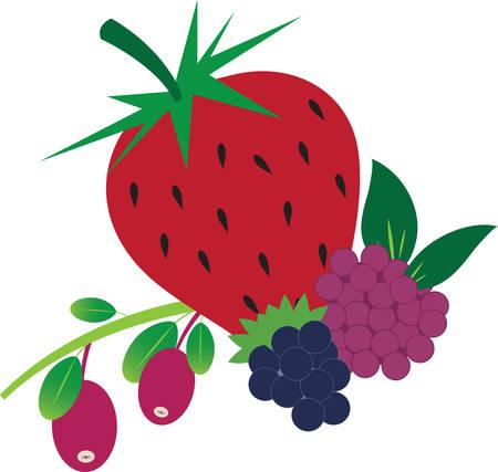 カラフルな混合料理やキッチンの設計のための果実。