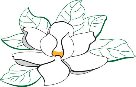 Use this magnolia flower for a southern touch. Иллюстрация