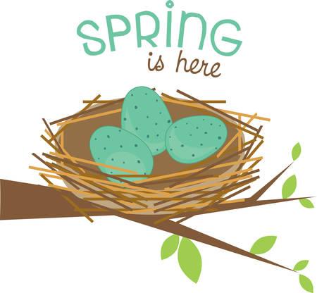 birder: This cute bird nest makes a perfect gift for a birder. Illustration