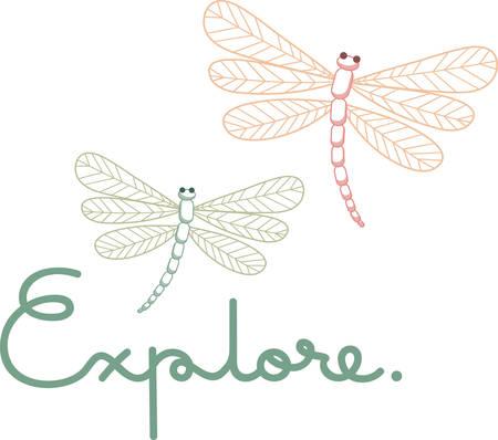Diese Libellen einen Hauch von Frieden zu Ihrem Projekt hinzufügen. Standard-Bild - 41355689