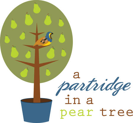 pear tree: Partridge in a Pear Tree is a perfect gift and a delightful decoration for your home to welcome your guests on Christmas. Illustration