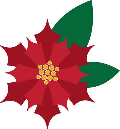 クリスマスのテーブル リネンや装飾にこのポインセチアを使用します。