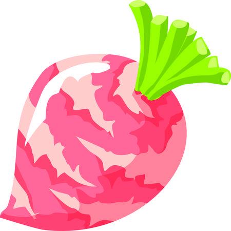 Groenten zijn een must op een dieet. Stock Illustratie