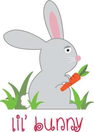 Feed the lettuce to the bunny and eat the bunny. Banco de Imagens - 41370408