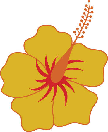 Lovely Hibiscus flower  wonderful way to adorn your favorite projects. Illustration