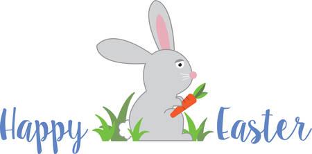 cottontail: Alimentar a los lechuga para el conejo y comer al conejito. Vectores