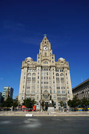 Royal Liver building in Liverpool 新聞圖片