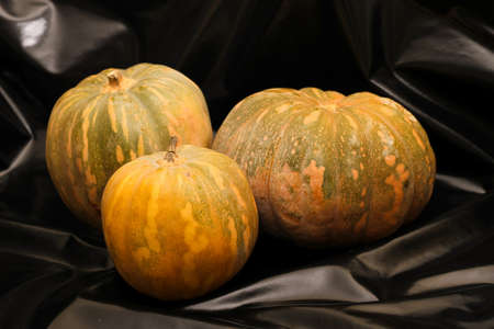 Pumpkins on a black shinny background  photo