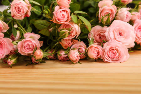 Bunch of small pink Roses.  photo