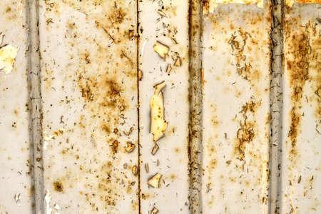 oxidize: Old peel off and oxidize metallic door background