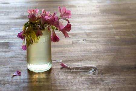 melancholijny: Melancholic scene of a jar with flowers