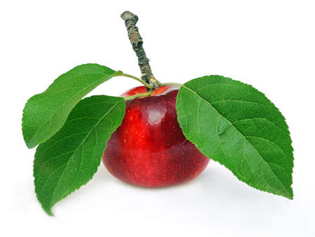 Red apple with green leaves Stock Photo