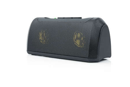 speaker box: Minispeaker. Audio box for mobile phones and laptops with card-reader, amplifier and MP3 player.