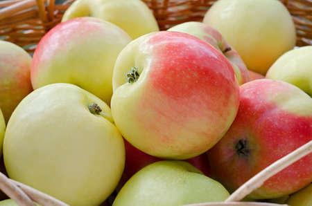 wattled: Apples in the wattled basket