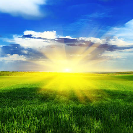 Sunrise over a spring meadow with green grass against a blue sky and clouds photo