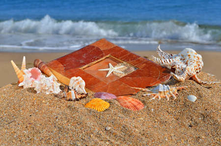 Scallops, clams and an old album on the beach sand against blue sea Stock Photo - 16514462