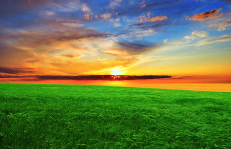 Dramatic sunset over the green field.  Summer landscape. photo
