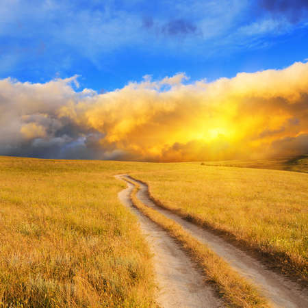gold road: Dramatic sunrise over the meadow. Summer landscape.