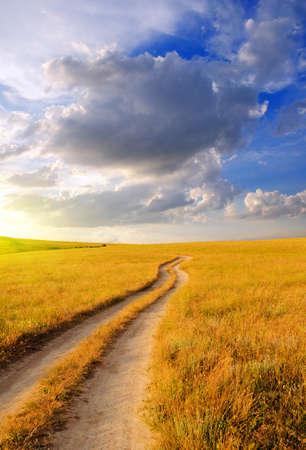 Dirt road in the steppe at dawn. Beautiful summer landscape Standard-Bild