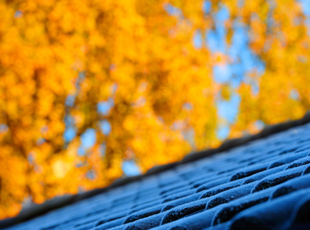 First frost on roof tiles fall leaves in backgound Stock Photo