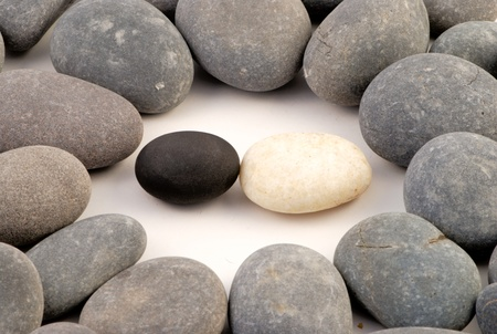 Closup of black and white stone surrounded by grey stones