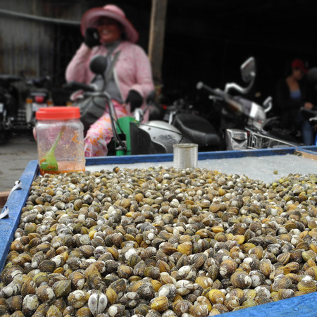haggling: Street vendor selling a large amount of fresh clams at a market