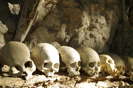 horrifying: Horrifying skulls at a funeral site, a traditional burial place with hanging graves in Toraja Highlands, Sulawesi, Indonesia Stock Photo