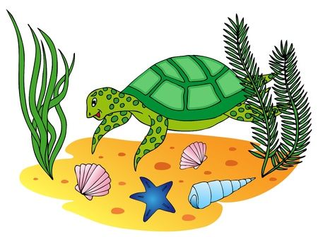 Aquatic turtle in the ocean  Vector