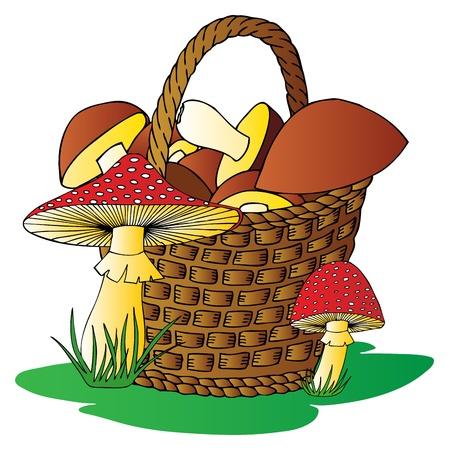 Panier avec des champignons