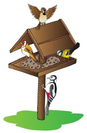 Birds on feeder   Vector