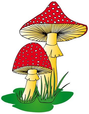 pilz cartoon: Fliegenpilz im Gras - Vektor-Illustration