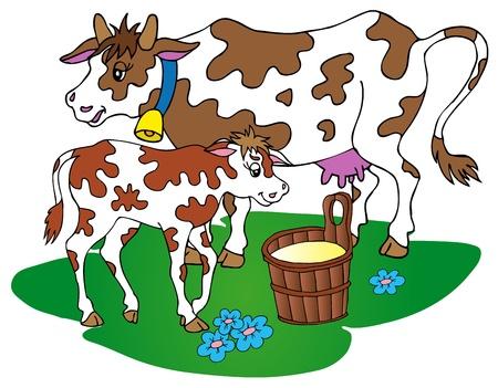 cow bells: Vaca con ternero - ilustraci�n vectorial