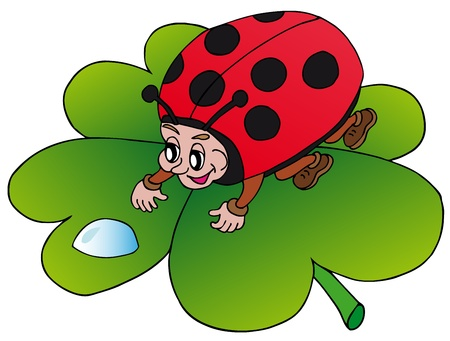 Ladybird and drop - vector illustration  Illustration