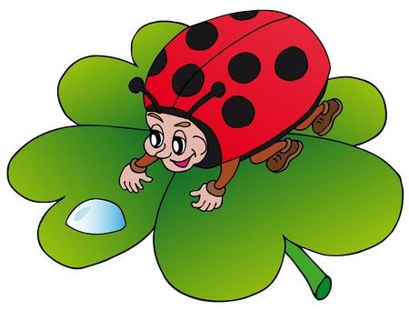 dew drop: Ladybird and drop - vector illustration  Illustration