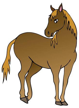 Brown horse on white background - vector illustration