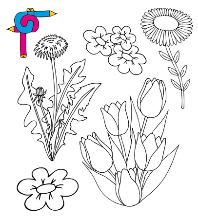 Coloring image flowers - vector illustration  Vector